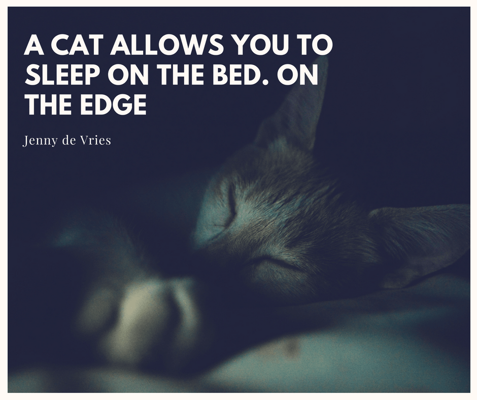 Qoute of Jenny de Vries about cats and sleep