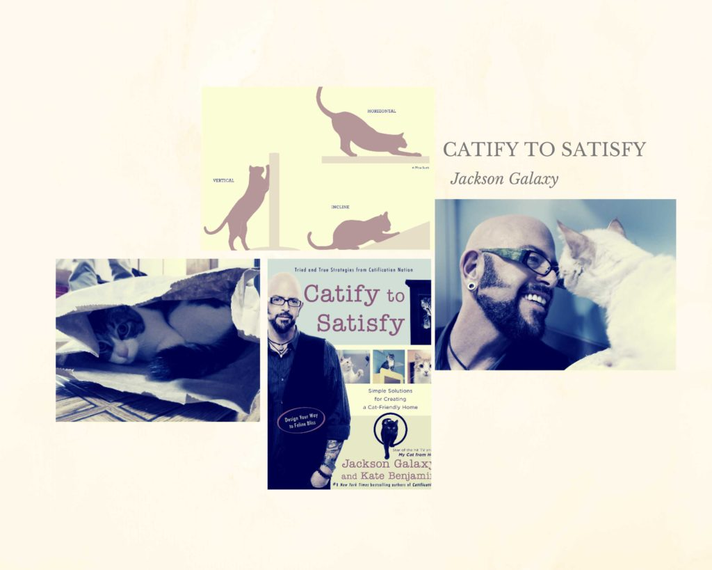 A book titled Catify to Satisfy by famous cats' dad Jackson Galaxy
