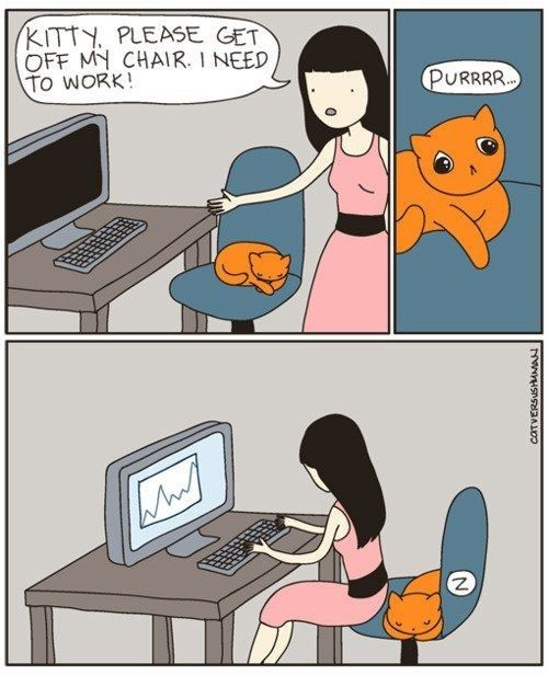 A girl with darl long hair is sitting in front of computer and a ginger cat is sleeping on her dark blue chair