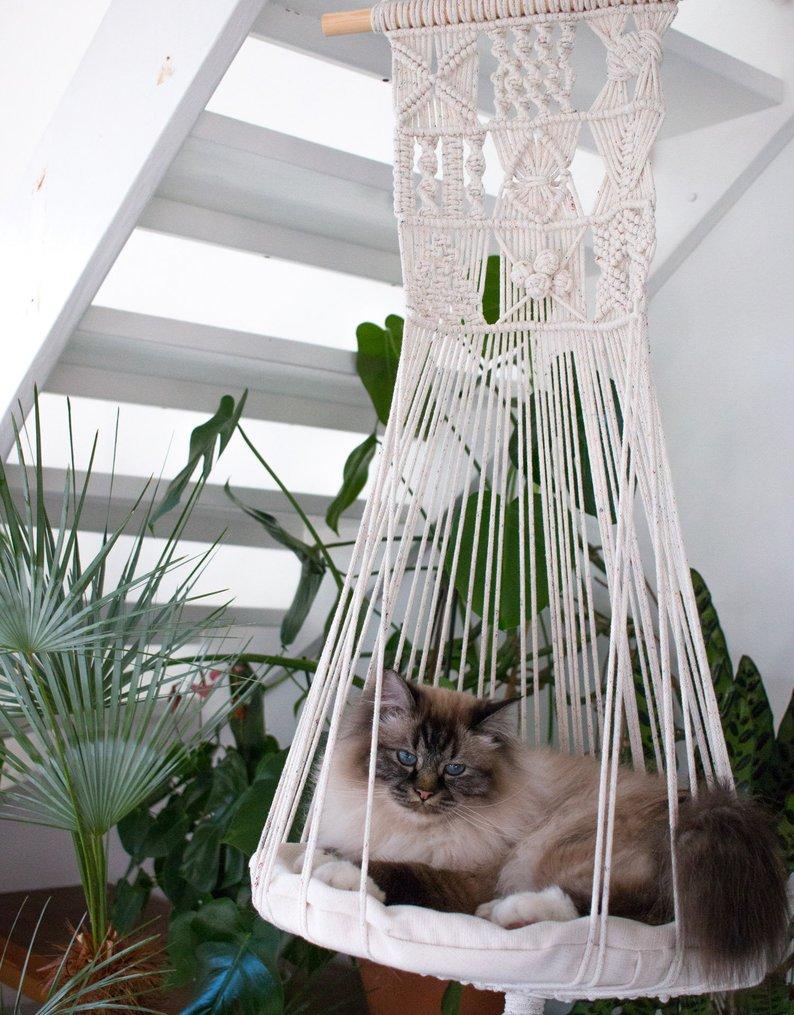A Birman cat that is relaxing in white handmade hammock
