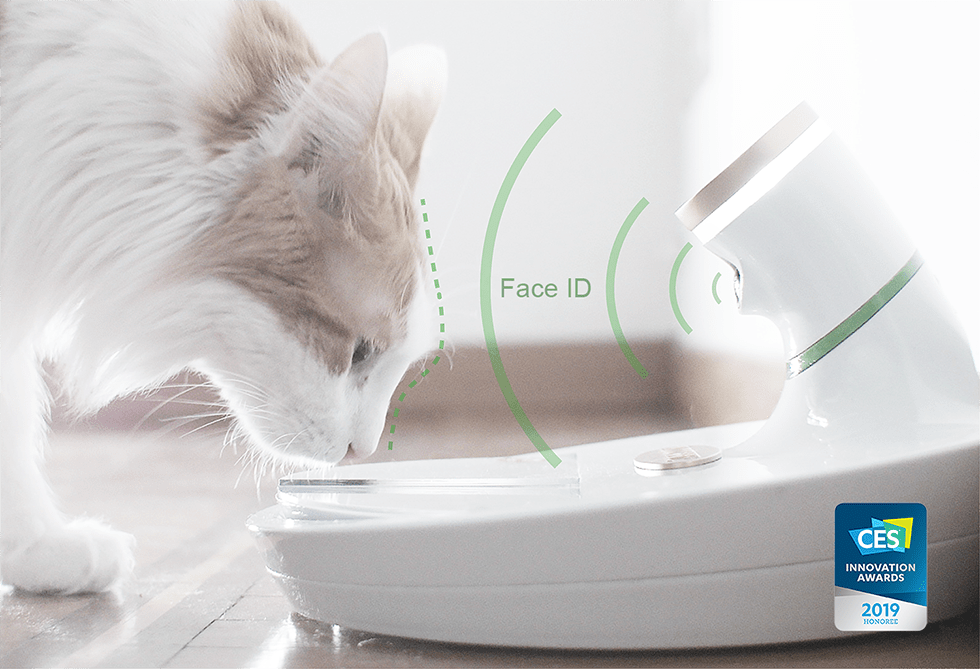 Mookkie high tech bowl of Italian design for cats