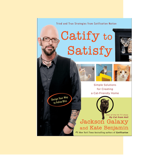 Catify to Satisfy - one of the best cat behavior books