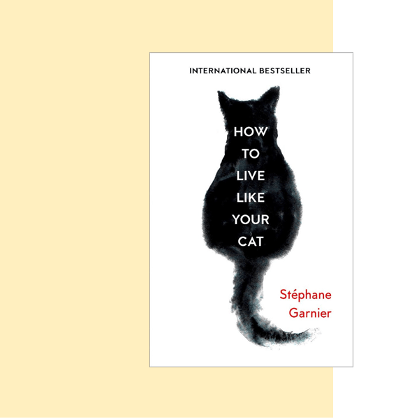 How to Live Like Your Cat is one of the best cat humor books