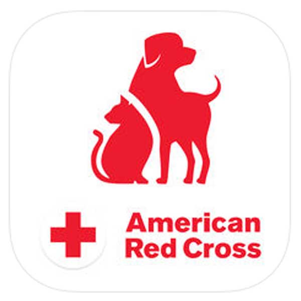 Pet First Aid  App for cat owners