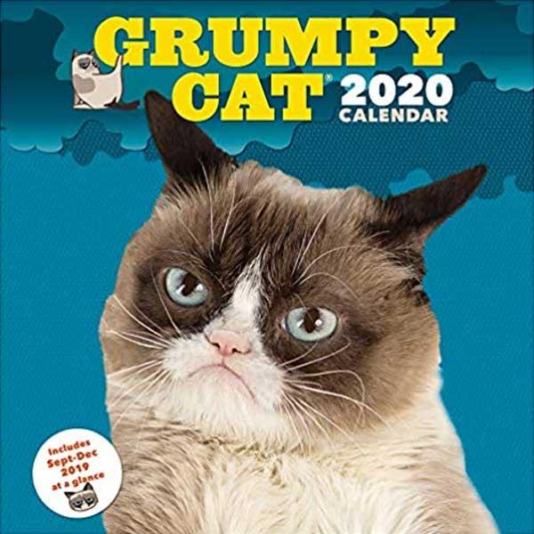Grumpy cat calendars 2020 on Amazon