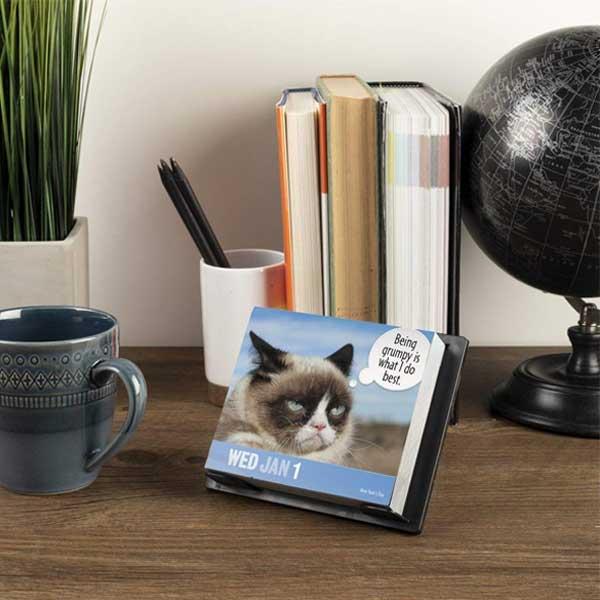 Grumpy Cats Calendar 2020 By Year-In-A-Box