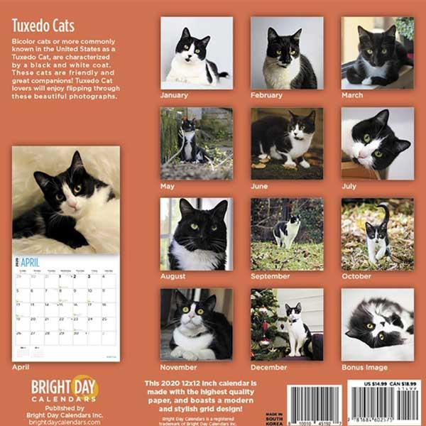 Tuxedo cat calendar 2020 by Bright Day Calendars