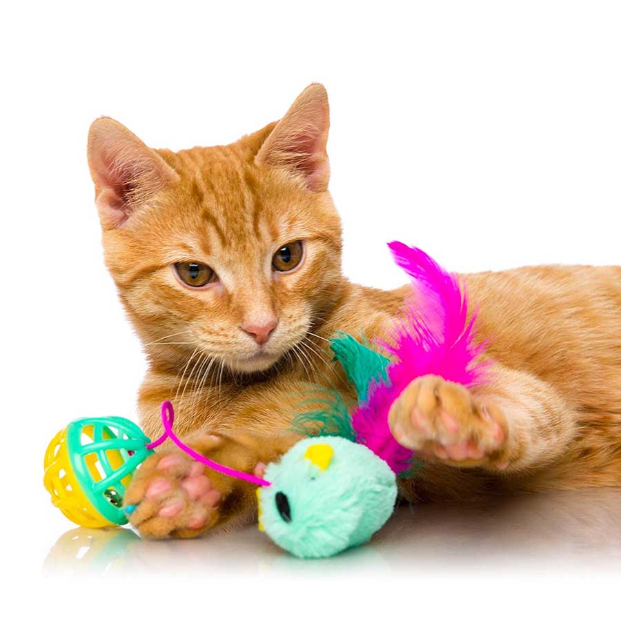 Hartz Just For Cats Cat Toys
