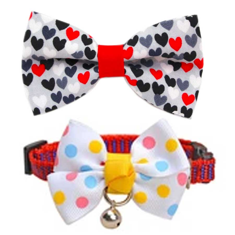 A fancy bow tie for cats