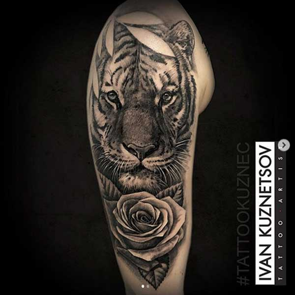 A wild cat with rose tattoo by Ivan Kuznetsov