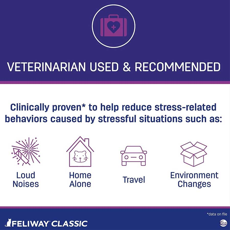 Feliway classic for cats - information about situations when Felliway works