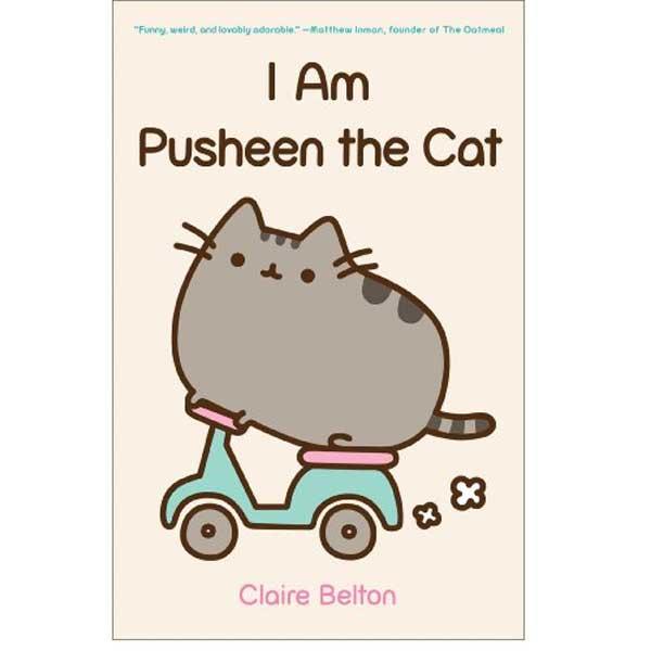 The illustration on Pusheen Cat