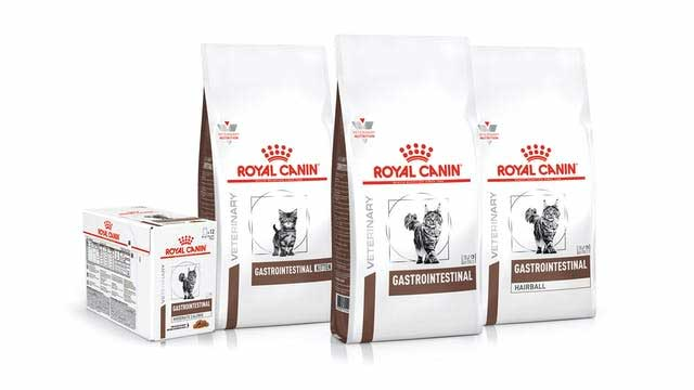 Dry and wet cat food for gastrointestinal problems by Royal Canin