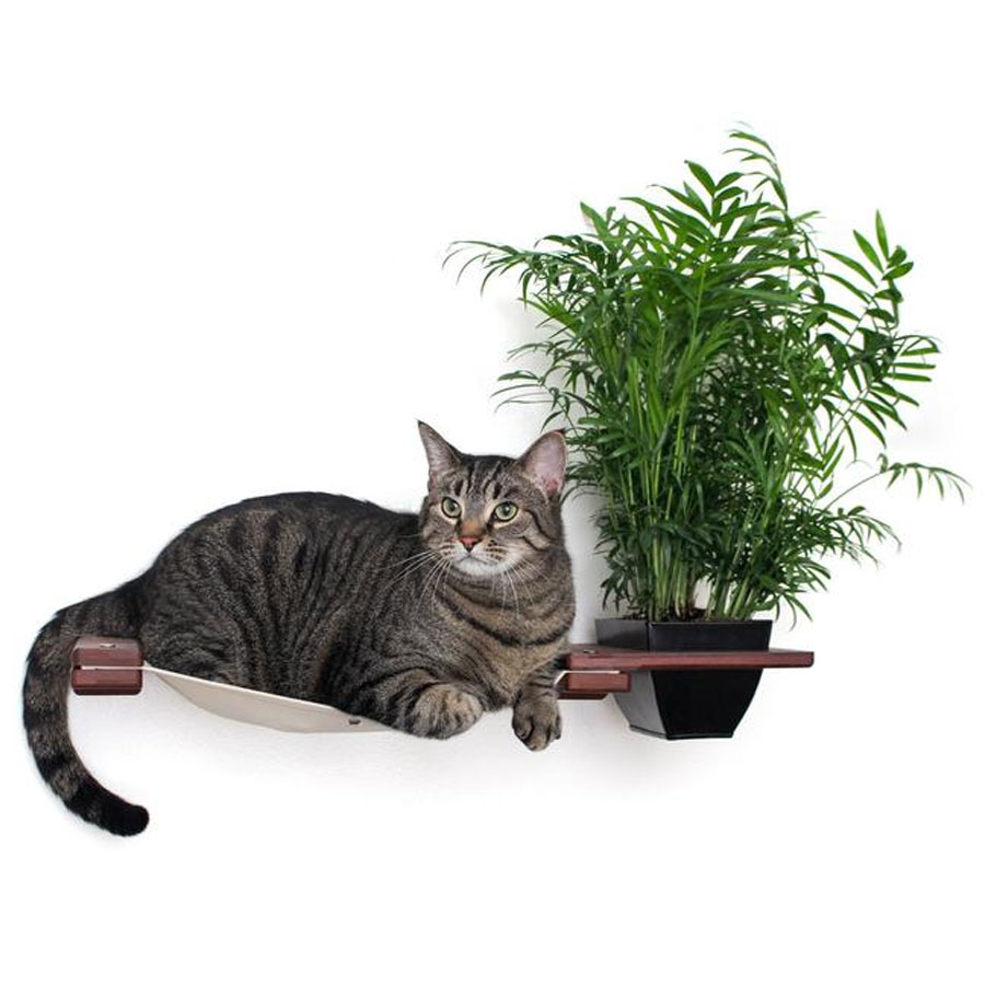 a grey cat is laying on wall cat hammock with a planter