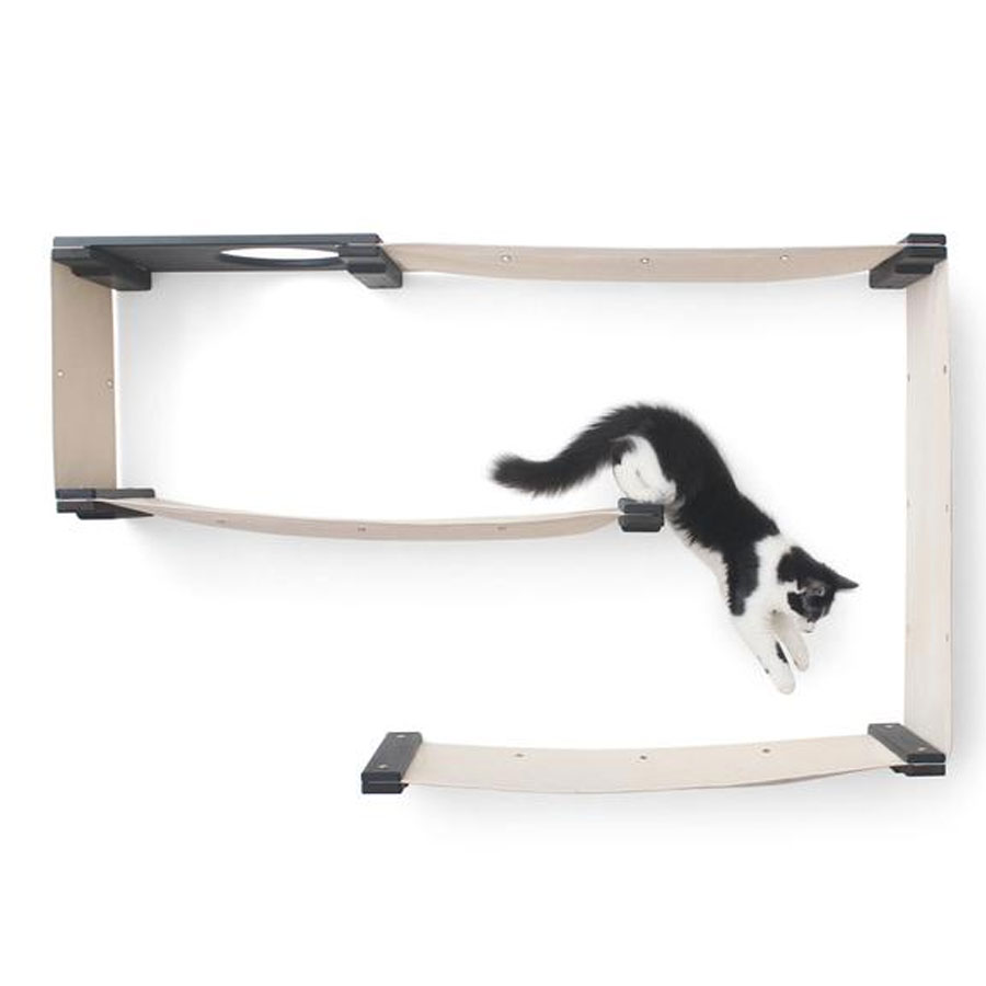 A white and black kitten who is jumping onto wall shelf