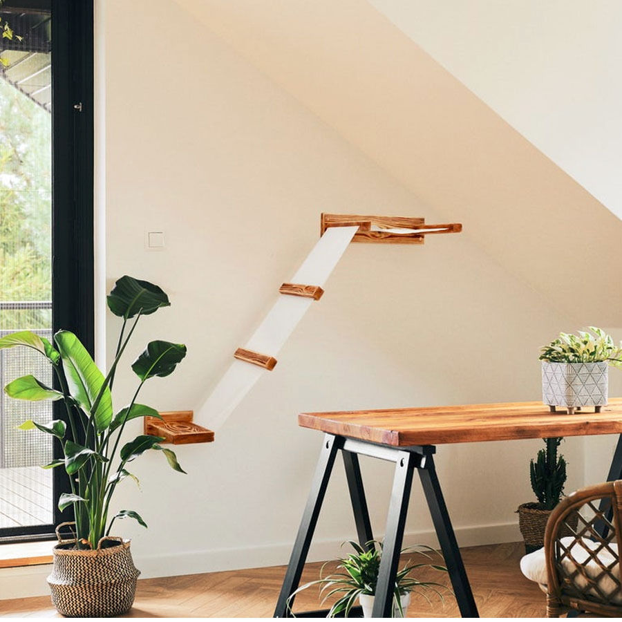 a room with plants, desk and a wall shelf for kitty