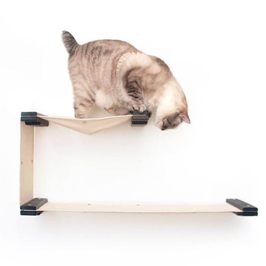 a kitty who is standing on wall mounted canva hammock
