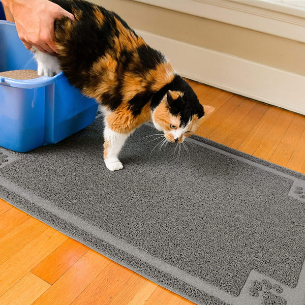 ginger, white and black cat is standing on cat litter mat manufactured by CleanHouse