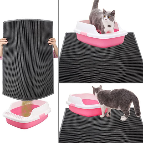 A grey and white kitty who is standing on grey cat litter mat