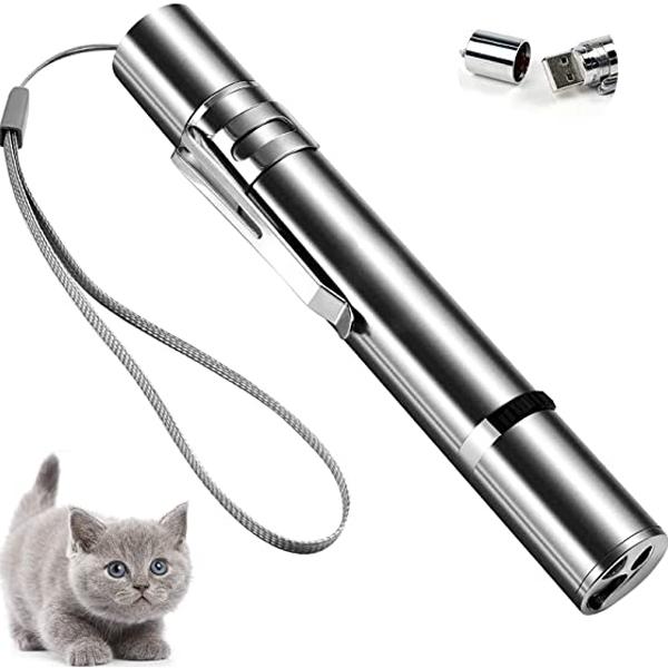 A kitten with a catlaser pointer by FOBSERD